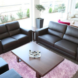 Ekma Furnishings - Living Room Leather Sofas